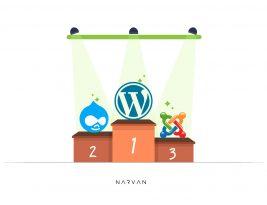 چرا طراحی سایت با وردپرس در میان مردم محبوب شد؟
